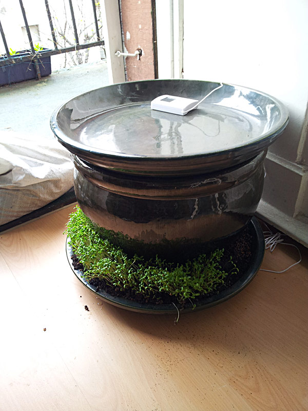 projekt wurmfarm in terrakottabeh ltern seite 2 kompostw rmer wurmfarmen. Black Bedroom Furniture Sets. Home Design Ideas